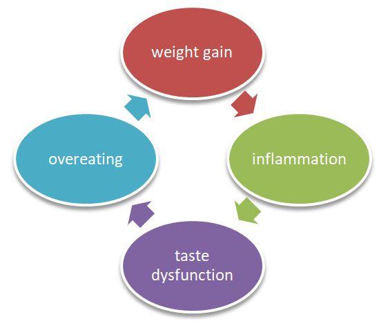 Weight Taste Relation
